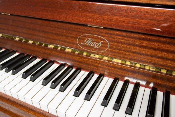 Ibach C116 Keys